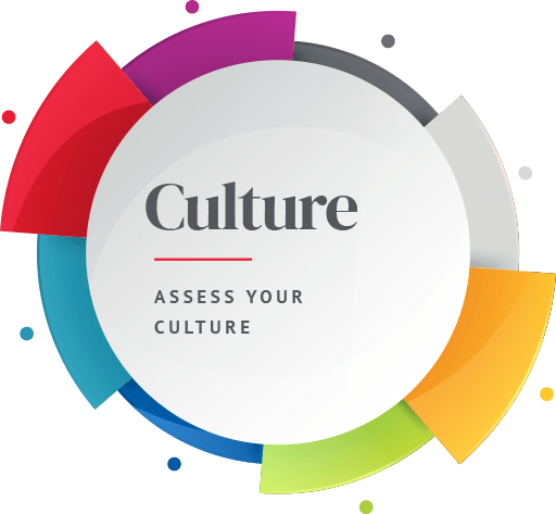 Spherical Culture Icon: Asses your culture